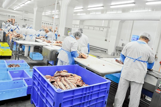 "Food Industry Implement People Safety in the ""Work Warm-up Schedule"" With RFID"